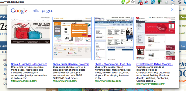 Zappos Google Similar results